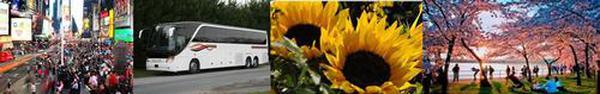 lgbus_trip_grouping_pic.jpg
