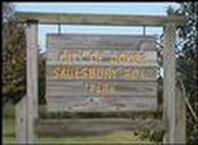 Saulsbury Park